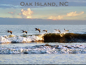 Oceanfront Homes For Rent In Oak Island Nc